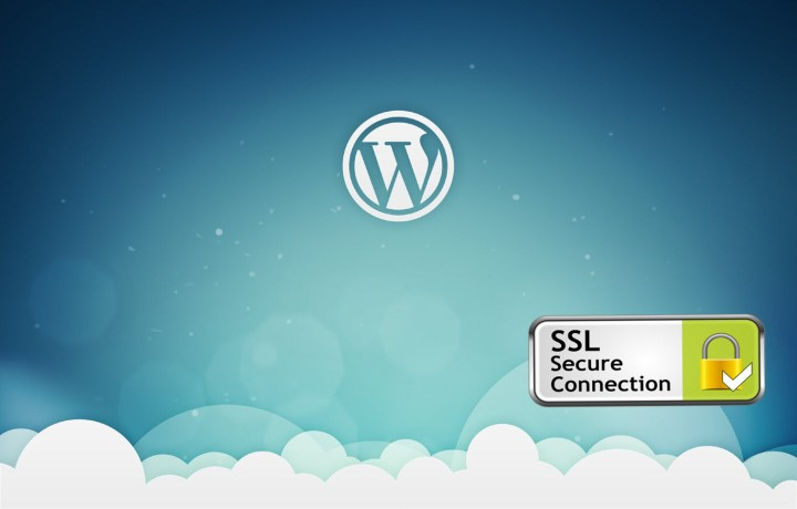 Wordpress.org incorpora el cifrado completo mediante HTTPS