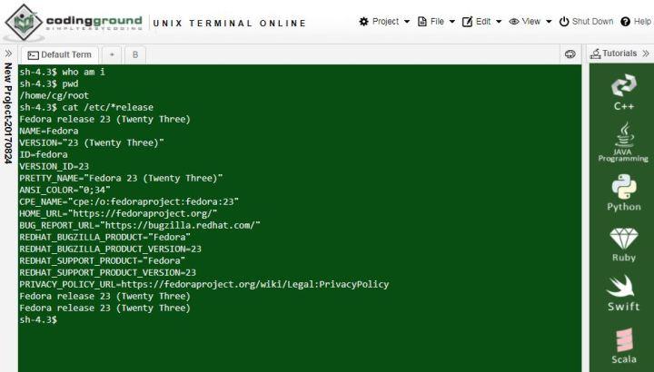 Unix terminal online