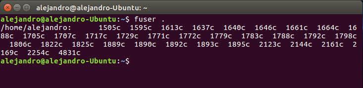 fuser linux